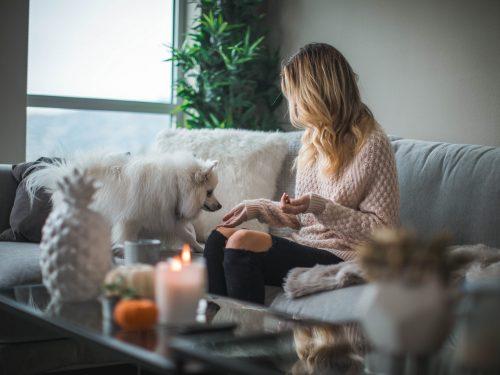 Assicurazioni casa, famiglia e animali domestici